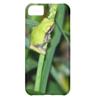 Little Green Frog iPhone 5C Case