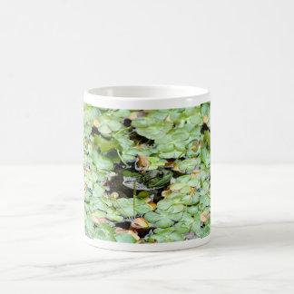 Little Green Frog Mug