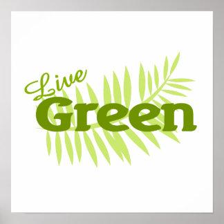 live green fern poster