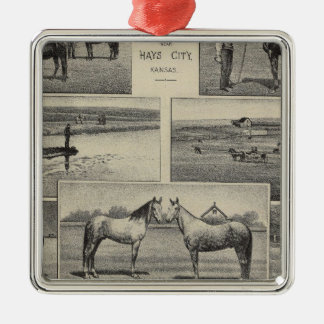 Live Stock in Kansas Silver-Colored Square Decoration