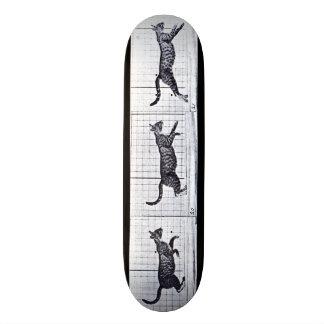 LOCO MOTION Skateboard: Cat Walking Gallop Skateboard Deck