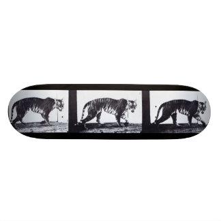 LOCO MOTION Skateboard: Tigress Walking Skateboard Deck