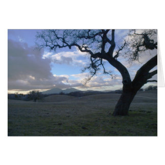 Lone Oak overlooking Mt. Diablo in Winter Note Card