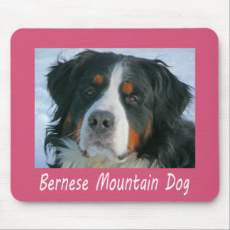 Love Bernese Mountain Puppy Dog Pink Mouse Pad