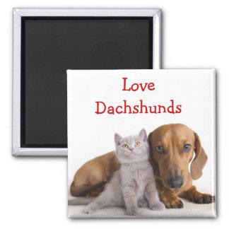 Love Dachshund and Kitten Fridge Magnet