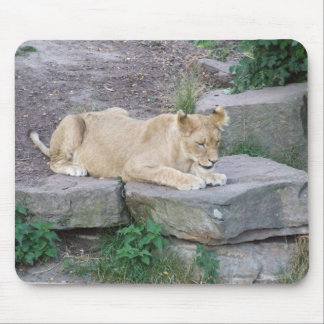 Lovely Lioness Mouse Pad