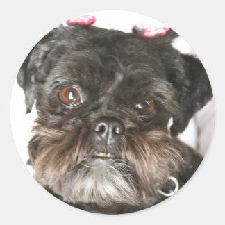 Mae the ewok-type dog round sticker