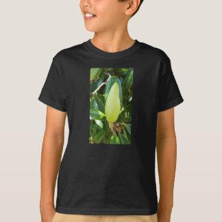 Magnolia Tree Bud Tee Shirt