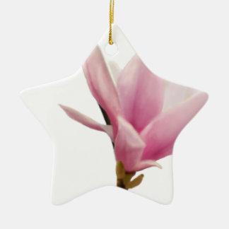 Magnolie Ceramic Star Decoration