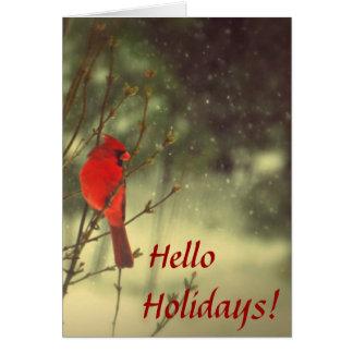 Male Cardinal Note Card