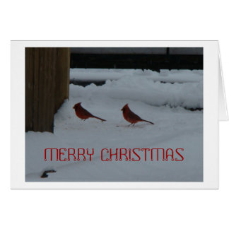 Male Northern Cardinals In Snow Note Card