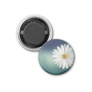 marguerite 3 cm round magnet