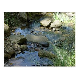 Marsh Creek in Spring Postcard