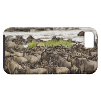 Massive Wildebeest herd during migration, Tough iPhone 5 Case