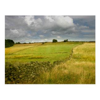 Meadows and Walls Postcard