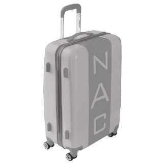MEDIUM Silver + Gray Monogrammed Luggage