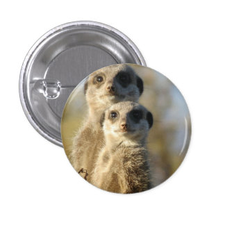 Meerkat 3 Cm Round Badge