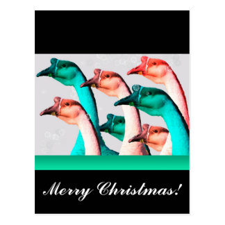 Merry Christmas: Geese Red & Green Say Merry Chris Postcard