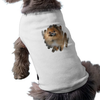 Miniature Pomeranian Dog Shirt