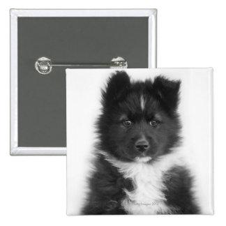 Mongrel Dog, Studio Shot 15 Cm Square Badge
