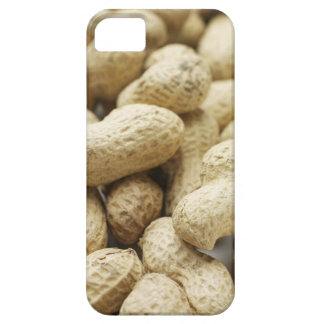 Monkey nuts. case for the iPhone 5