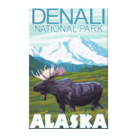 Moose Scene - Denali National Park, Alaska Gallery Wrapped Canvas