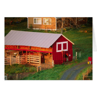 Morning chores on the farm. USA, Vermont, Greeting Card