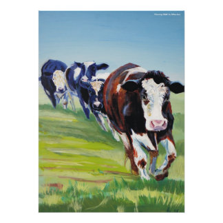 'Morning Walk'  Holstein Friesian cow painting Poster