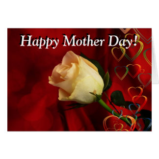Mother day greeting, white rose on red background greeting card