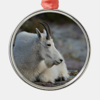 mountain goat resting Silver-Colored round decoration