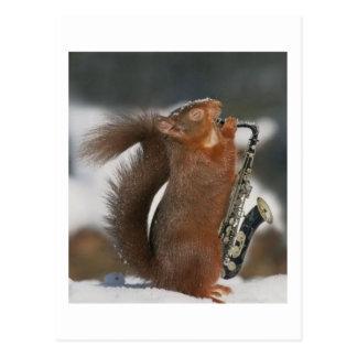 Musical Squirrel Post card