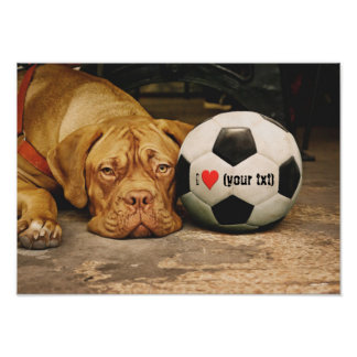 My dog loves soccer and I love my dog! Poster