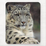 My Mouse... Mouse Pad