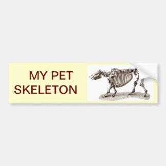 MY PET SKELETON BUMPER STICKER