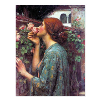 My Sweet Rose Postcard