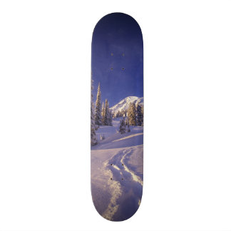 NA, USA, Washington, Mt. Rainier NP, Snowshoe Custom Skate Board