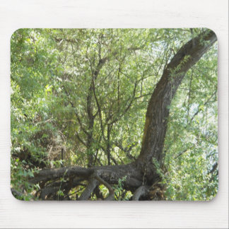Nature's Creation Mouse Pad