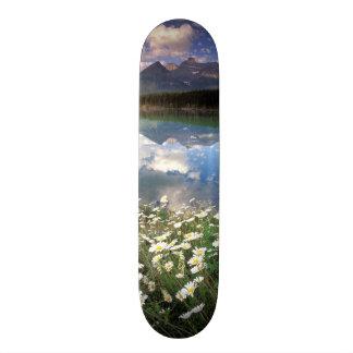North America, Canada, Alberta, Banff National 2 18.1 Cm Old School Skateboard Deck