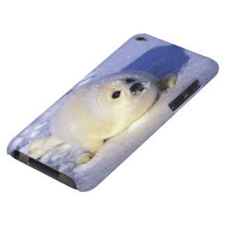 North America, Canada, Gulf of St. Lawrence. 4 iPod Case-Mate Case