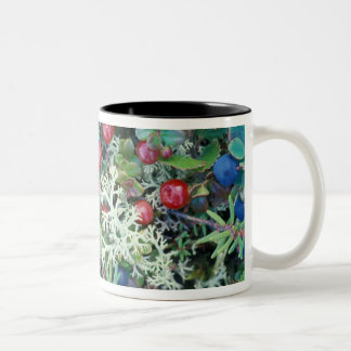 North America, USA, Alaska, Landscape, berries Two-Tone Mug