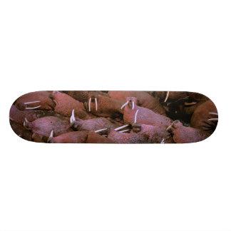 North America, USA, Alaska, Yukon Delta National 21.6 Cm Skateboard Deck
