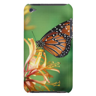 North America, USA, WA, Seattle, Woodland Park Barely There iPod Cases