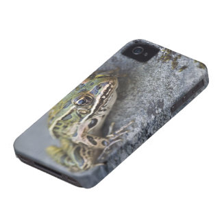 Northern Leopard frog, See-through Island, iPhone 4 Cases
