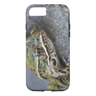 Northern Leopard frog, See-through Island, iPhone 7 Case