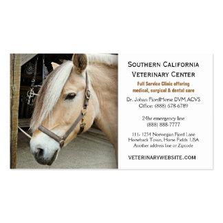 Norwegian Fjord Horse Veterinarian Vet Clinic Pack Of Standard Business Cards