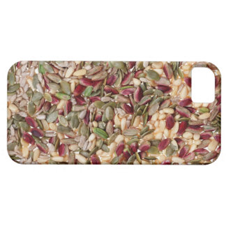 Nut iPhone 5 Cover