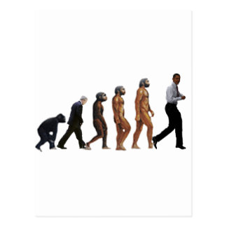 Obama Evolution Postcard