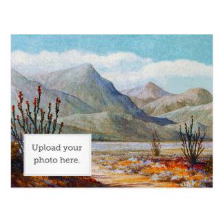 Ocotilla Shrub Postcard