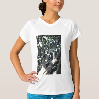 Old Fig Tree T-shirt