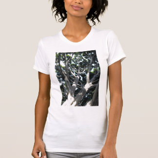 Old Fig Tree T-shirts